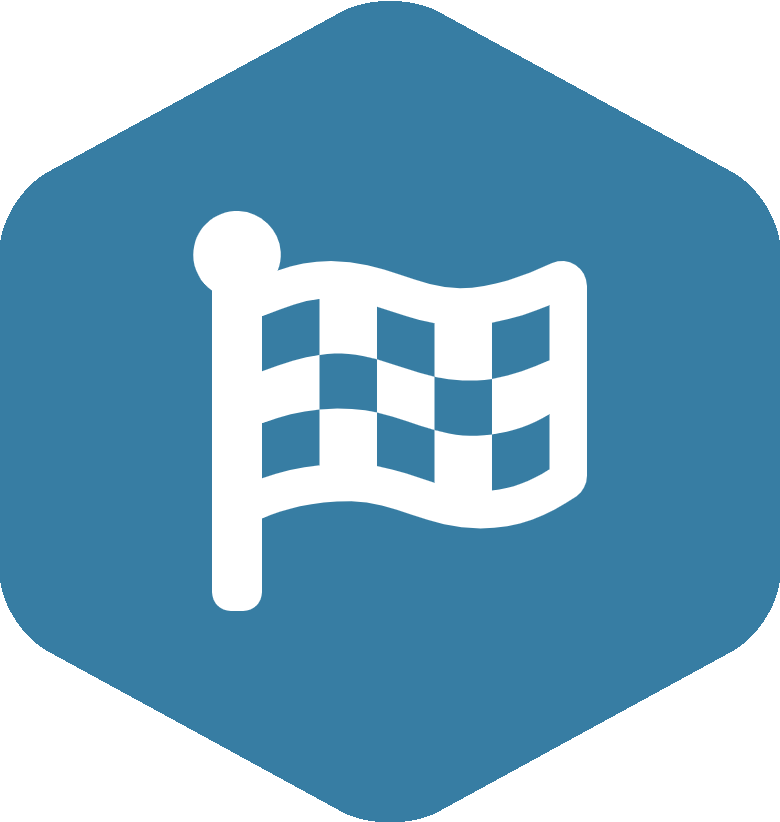 Flag Checkered